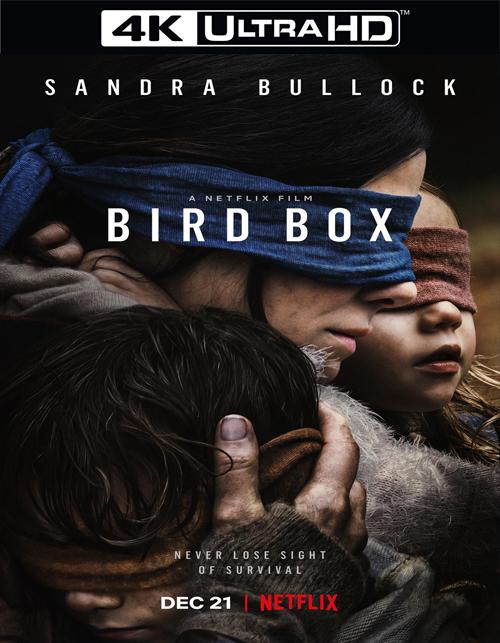 تحميل فيلم Bird Box 2018 مترجم [4K]